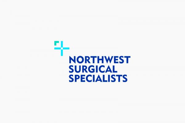 NSS-logo-4