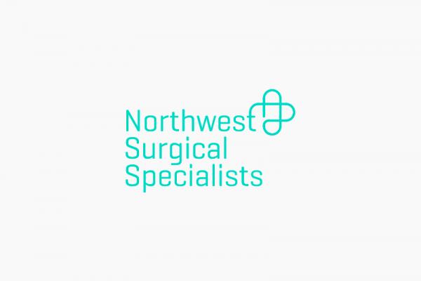 NSS-logo-5