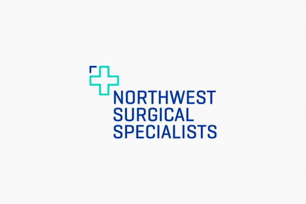 NSS-logo-6